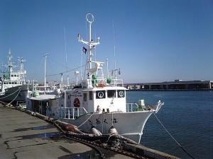 『日本の船』ってそもそも何?、20トンってどれぐらい?|行政書士阿部総合事務所