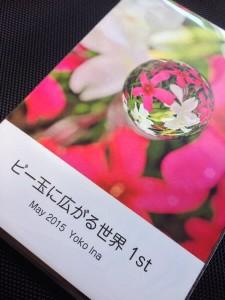 マイ・ストレングス コンサルタント伊奈 葉子さんのフォトブック|行政書士阿部総合事務所