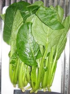 東京都が全国出荷量2位はアノ野菜だった!|行政書士阿部総合事務所