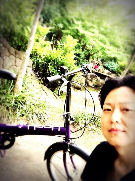 西友の折りたたみ自転車は買っても大丈夫!6段変速ギア付きでまさかの10,900円!|行政書士阿部総合事務所