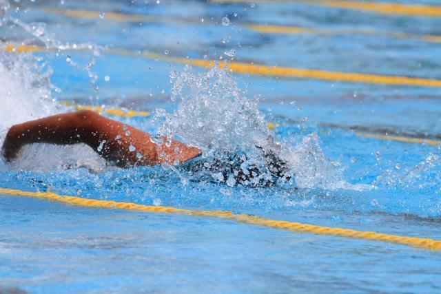 水泳も終活も同じ!、上達するには専門家のアドバイスを求めると良いですよ|行政書士阿部総合事務所