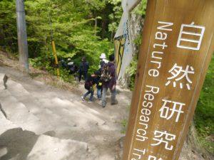 初めての高尾山登山で準備したアイテム、次の高尾山で準備したいアイテム|行政書士阿部総合事務所