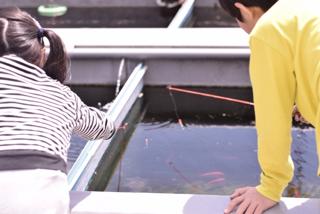 釣堀の魚は必ず居なくなる!新人保険営業職員向けのライフプランニングセミナー|行政書士阿部総合事務所